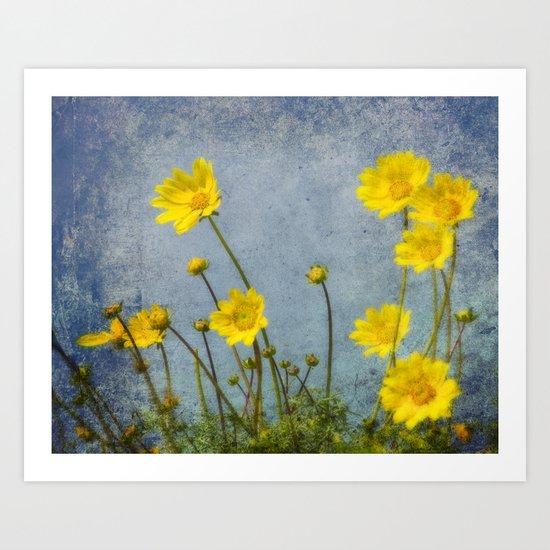 Yellow Flower Blossoms Art Print