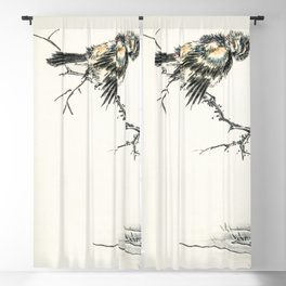 Chick  from Pictorial Monograph of Birds (1885) by Numata Kashu (1838-1901) Blackout Curtain