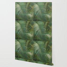 Palm garden background Wallpaper