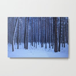 Winter pine forest in blue. Metal Print
