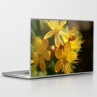 marc johns Laptop & iPad Skins featuring Turkish St Johns Wort Wild Flower Vector Image by taiche