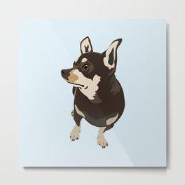 Hopeful Dog Metal Print