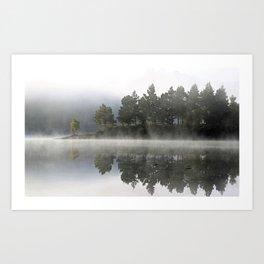 Reflections - trees Loch Affric Art Print