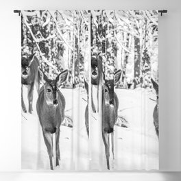 Winter Wildlife - Deer Fawn Forest Adventure Nature Photography Blackout Curtain