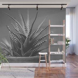 Zebra Haworthia (Stripes in Black and White) Wall Mural