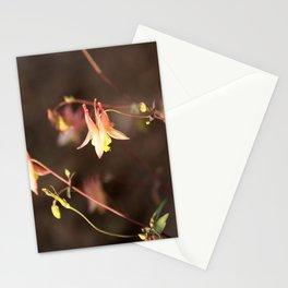 Pink Columbine Stationery Cards