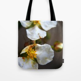 The Wisdom of Peace Tote Bag