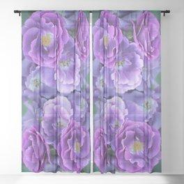 Deep purple roses. Sheer Curtain