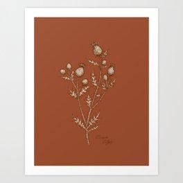Thistle in Autumn Art Print