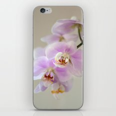 orchid close up iPhone & iPod Skin