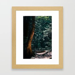 South Pond Loop Framed Art Print
