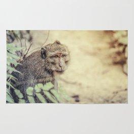 Monkey Rug