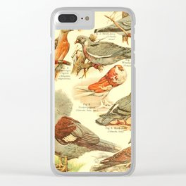 William Playne Pycraft - A Book of Birds (1908) - Plate 17: Pigeons and Doves Clear iPhone Case