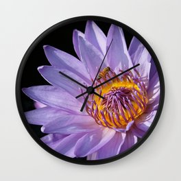 Evening Nymphaea Wall Clock