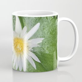 White Lily Pads in Pond Coffee Mug