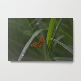 Dreamy, Continued Metal Print