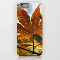 Japanese Maple Leaf Slim Case iPhone 6s