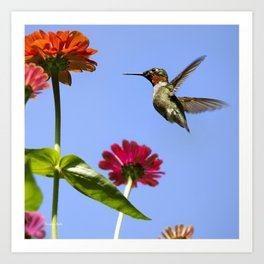 Hummingbird Happiness Art Print