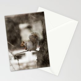 Squirrel Through the Screen Stationery Cards
