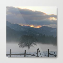 Misting Fog in the evening... Metal Print