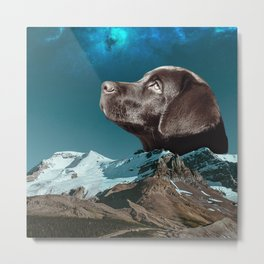Night travel with my dog Metal Print