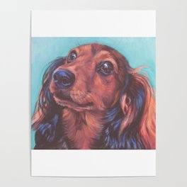 The long haired Dachshund from an original painting by L.A.Shepard Poster