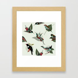 Paradise Birds Framed Art Print