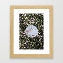 Reflections, Six Framed Art Print