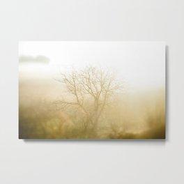 Golden Tree in the Mist Metal Print