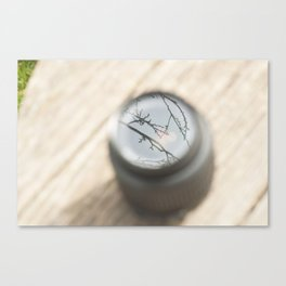 A lens is still viewing. Canvas Print