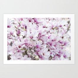 Blossoms II Art Print