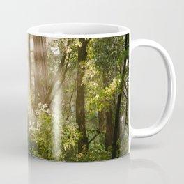 sunlit redwoods Coffee Mug