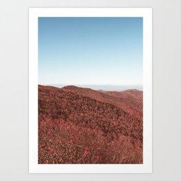 Mountain Coast Art Print