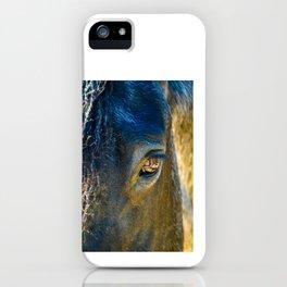 Colorful Horse Portrait  iPhone Case
