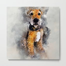 Patterdale Terrier Metal Print