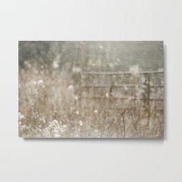First Snow - 02 Metal Print