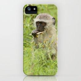 southafrica ... my tasty sugar cane! iPhone Case