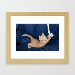 kitten playing with rope in a basket  Framed Art Print