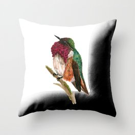 Wine-throated Hummingbird Throw Pillow