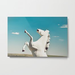 Guardian of the Plains Metal Print