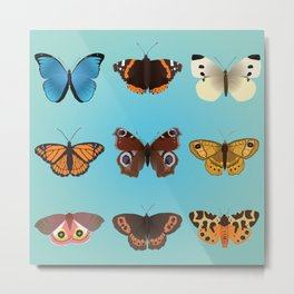 A collection of nine butterflies Metal Print