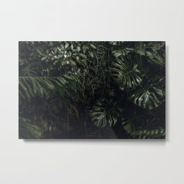tropical vi Metal Print