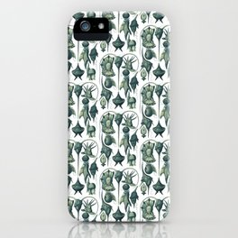Ernst Haeckel Peridinea Plankton Algae Teal iPhone Case