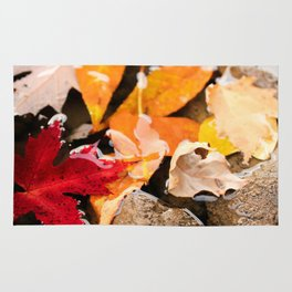 The River in Autumn. Rug
