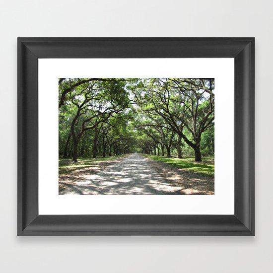 Wormsloe Drive Framed Art Print