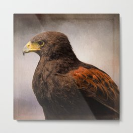 Wildlife Art - Meaningful Metal Print