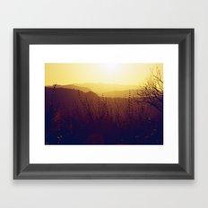 Malibu Wildflowers Framed Art Print