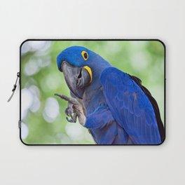 Hyacinth Macaw Laptop Sleeve