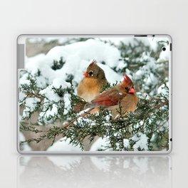 After the Snow Storm: Three Cardinals Laptop & iPad Skin