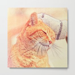 Cute Cat in Hallstatt Metal Print